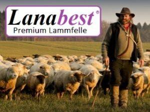 Lanabest Premium Lammfelle von Schäfer Lammfelle aus Pirmasens